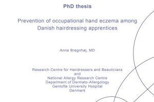 Anne Bregnhøj's Ph.d. forside